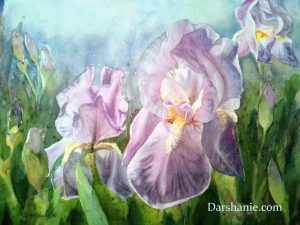 darshanie sukhu watercolor iris dream