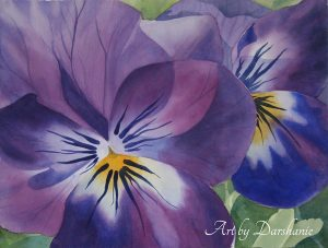 darshanie sukhu watercolor pansy clarity