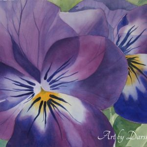 darshanie sukhu watercolor pansy clarity