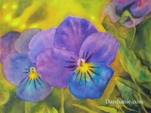 darshanie sukhu watercolor pansy innocence