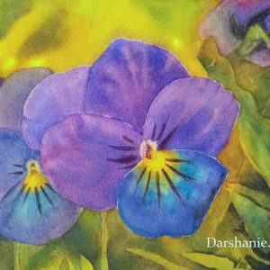 darshanie sukhu watercolor pansy innocence